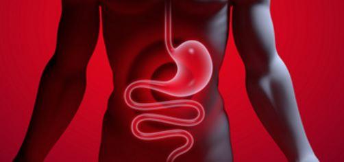 Soignez votre système gastro-intestinal naturellement
