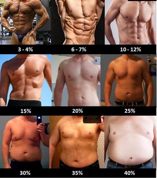 pourcentage-de-masse-grasse-des-hommes-et-femmes-1