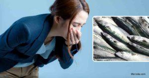 Qu'est-ce que l'intoxication scombroïde?